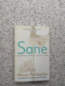 Sane: Mental Illness, Addiction, and the 12 Steps