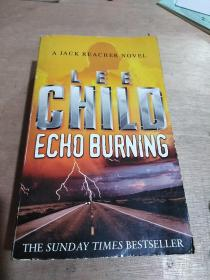 Echo Burning (Jack Reacher 05)