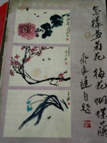 怎样画菊花,梅花,蝴蝶兰