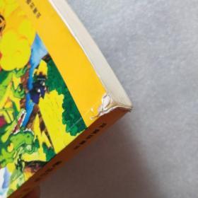 七龙珠 第二版 彩色版