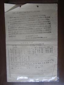 文革油印传单:中共江苏省委关于限期做好平反和材料清理工作的通知(华电红色工人造反队翻印)
