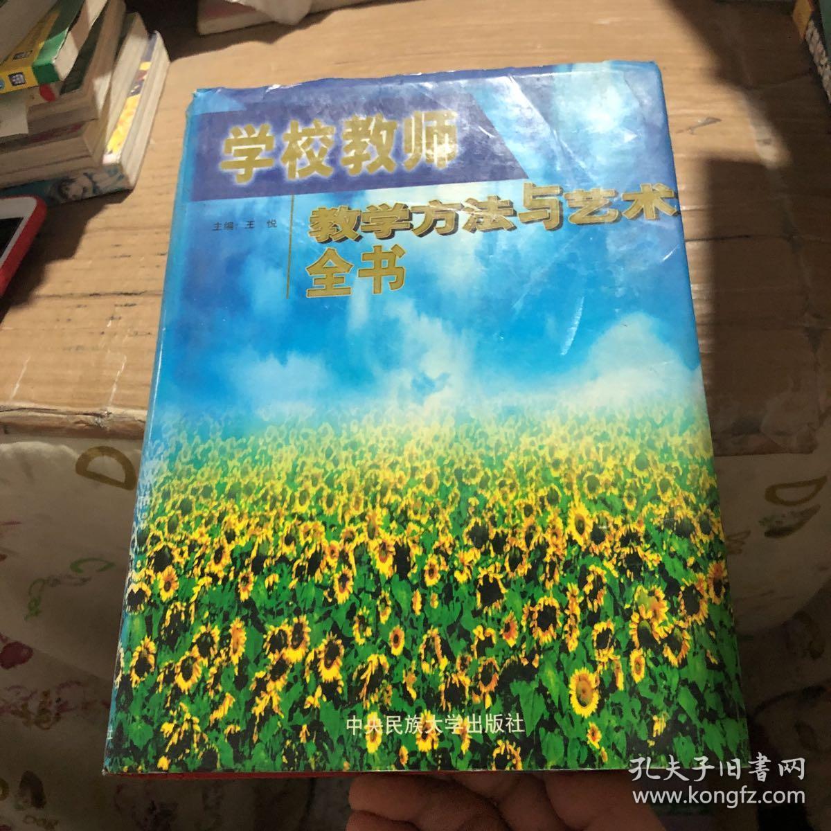 学校教师教学方法与艺术全书  下卷
