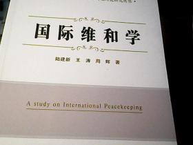 国际维和学