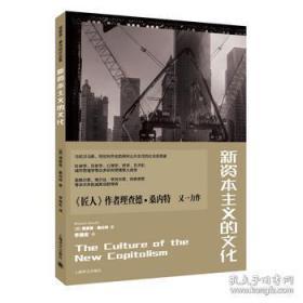 新资本主义的文化:理查德·桑内特作品集