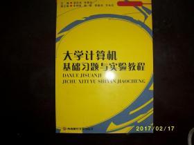 大学计算机基础习题与实验教程/梁庆龙主编/2010年/九品