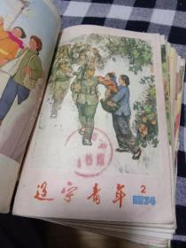 辽宁青年1974年1.2.3.4.7.8.9.10.11.12.13