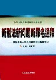 新刑法新问题新罪名通释 人民法院出版社 9787800566097