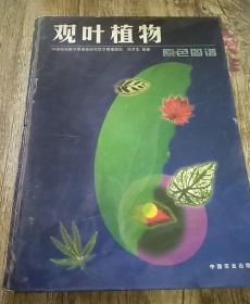 观叶植物原色图谱(精)