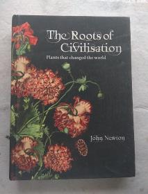 The Roots of Civilisation