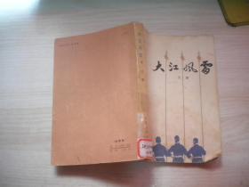 大江风雷(下册)