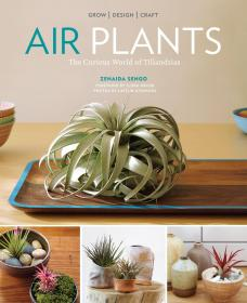 Airplants: the Curious World of Tillandsias