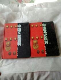 中国文史百科   上下卷两册全  (民族卷、民俗卷、制度卷、科技卷、思想卷、文学卷、艺术卷、历史卷)