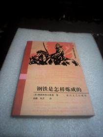 钢铁是怎样炼成的:世界长篇小说经典书系
