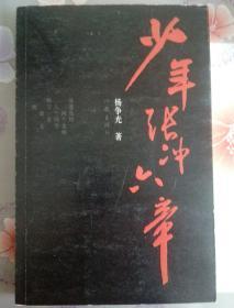 少年张冲六章