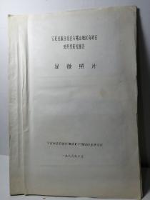 宁夏回族自治区石嘴山地区高龄石的开发研究报告 显微照片