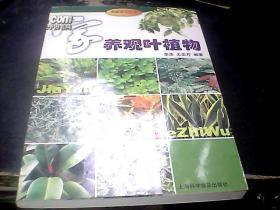 家养观叶植物——家庭花艺丛书