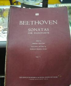 贝多芬钢琴奏鸣曲  外文书