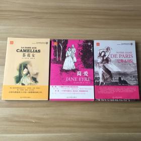 语文新课标必读丛书4、5、6 :茶花女·简爱·巴黎圣母院(3本合售)
