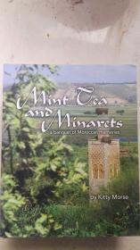 Mint Ceaano Minarets