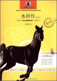 正版新书水浒传
