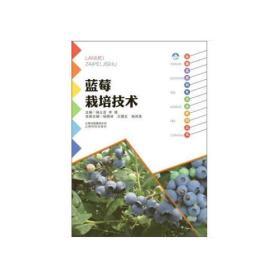 蓝莓栽培技术