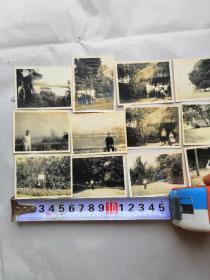 32649六十年代老照片《杭州西湖公园》12张(品相见图)
