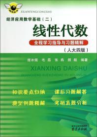 炫风丛书·经济应用数学基础(二):线性代数全程学习指导与习题精解(人大四版)
