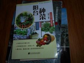 阳台种菜 从育苗开始学种菜