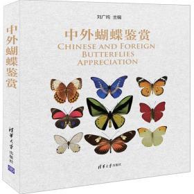 中外蝴蝶鉴赏