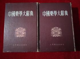 中国药学大辞典(上下册全)【馆藏 精装 看图见描述】