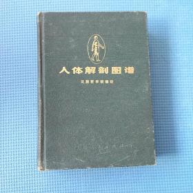 人体解剖图谱1973版