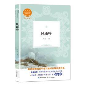 风雨吟(教育部新编初中语文教材拓展阅读书系)