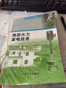 微型水力发电技术