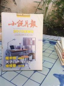 小说月报2010年增刊原创长篇小说专号(2)