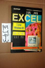 活用EXCEL7.0forWindows95  中文版