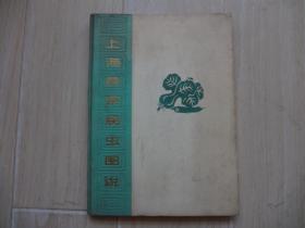 上海蔬菜病虫图说(馆藏书).