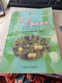 银杏栽培技术