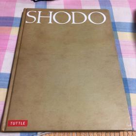 【日文版】SHODO 书道(日本人与欧美人写中国书法及哲学研究)