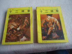 十二神拳武侠小说