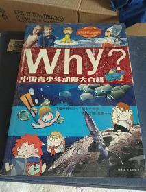 Why?:中国青少年动漫大百科