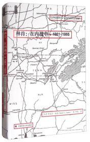 林肯:在内战中(1861-1865)/雅理译丛(塑封未拆)