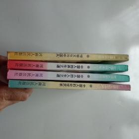 中国人的奥秘丛书:中国人的处世艺术.神秘文化与中国人,中国人的人生之道,中国人的养生之道(4本合售)
