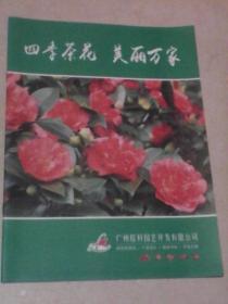四季茶花  美丽万家(广州棕科园艺开发有限公司产品图文宣传册)