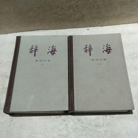 辞海语词分册(上下)
