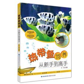 热带鱼饲养:从新手到高手