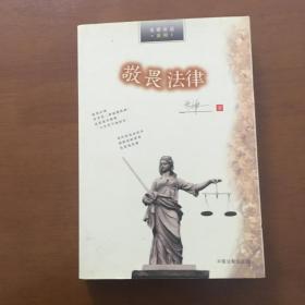 敬畏法律 朱伟一 中国法制出版社