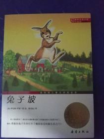 国际大奖小说(升级版):兔子坡