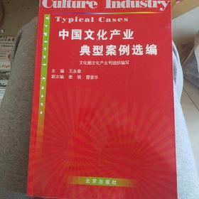 中国文化产业典型案例选编