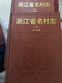 浙江省名村志(上下)