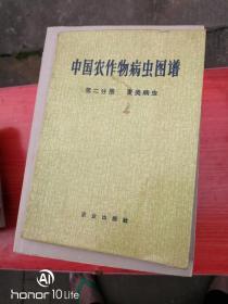 中国农作物病虫图谱 第二分册
